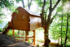 tree house kabin